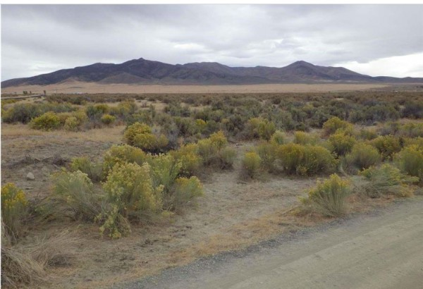39.55 Acres for Sale in Winnemucca, NV