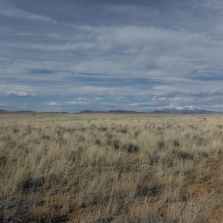 5.01 Acres for Sale in San Luis, CO