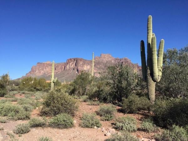 5 Lots for Sale in Concho, AZ