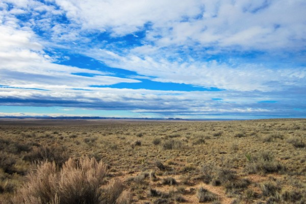 40 Acres for Sale in Chambers, AZ