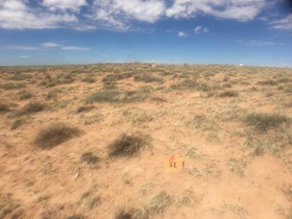 2.5 Acres for Sale in Sun Valley, AZ