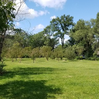 1.13 Acres for Sale in Monee, IL