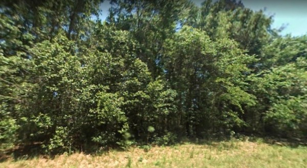 0.34 Acres for Sale in High Springs, FL