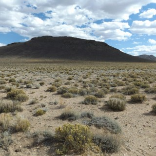 7.57 Acres for Sale in Blanca, CO
