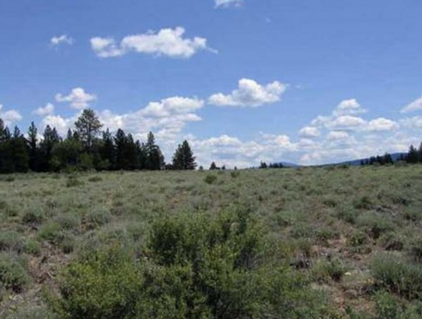 9.86 Acres for Sale in Bly, OR