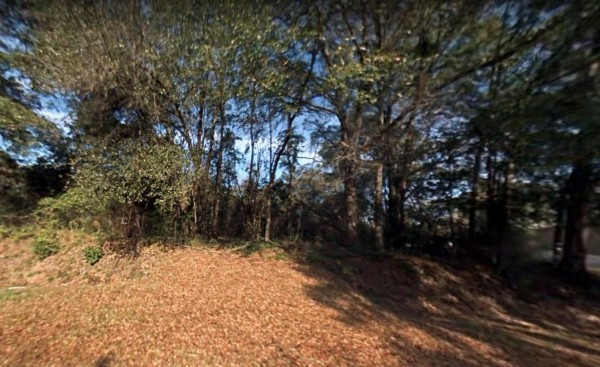 2 Acres for Sale in Chattahoochee, FL