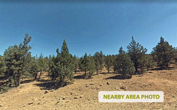 1.51 Acres for Sale in Alturas, CA
