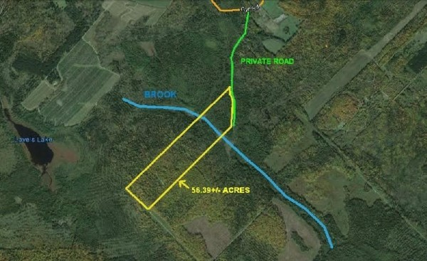 56.39 Acres for Sale in Grand Isle, ME