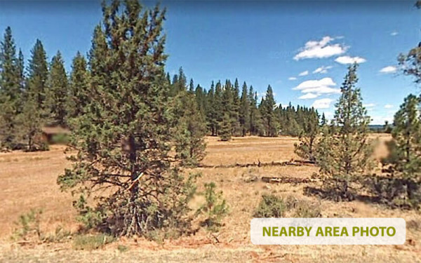 1.62 Acres for Sale in Lookout, CA