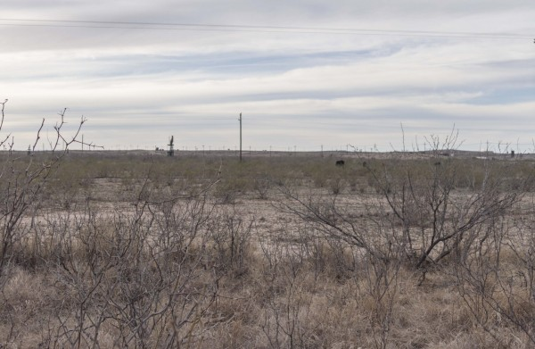 10 Acres for Sale in Orla, TX