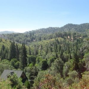 0.12 Acres for Sale in Cedar Glen, CA