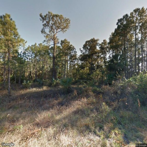 0.26 Acres for Sale in Lehigh Acres, FL
