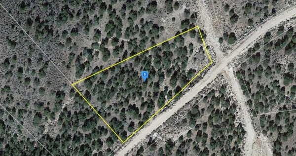 1.21 Acres for Sale in San Luis, CO