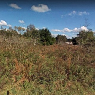 0.22 Acres for Sale in Summerfield, FL