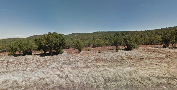 1.02 Acres for Sale in Concho, AZ