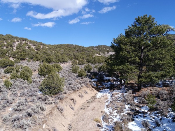 15.09 Acres for Sale in San Luis, CO