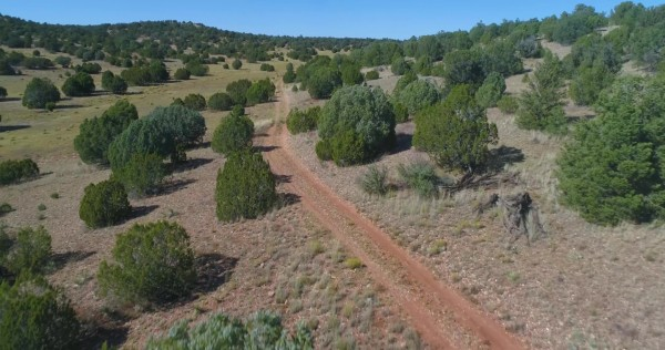 40 Acres for Sale in Seligman, AZ