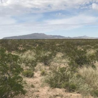 5.08 Acres for Sale in Dell City, TX