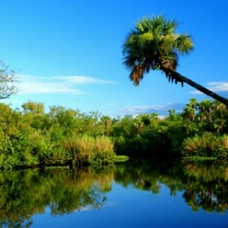 0.23 Acres for Sale in Port St Lucie, FL
