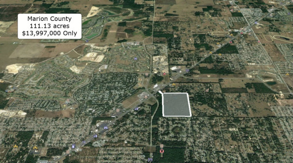 111.13 Acres for Sale in Ocala, FL