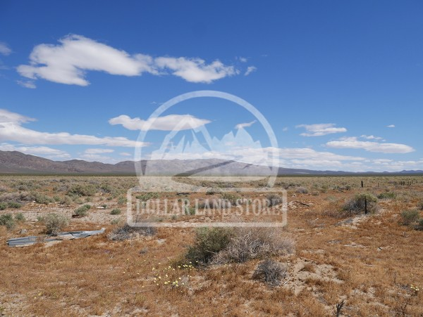 80 Acres for Sale in Randsburg, CA