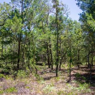 1.71 Acres for Sale in Interlachen, FL