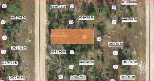 0.11 Acres for Sale in Interlachen, FL