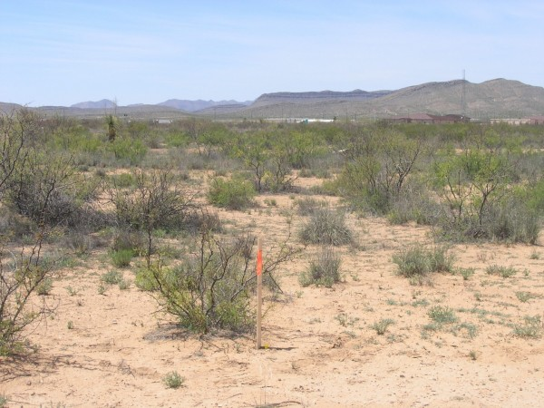 10 Acres for Sale in Sierra Blanca, TX