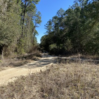 0.51 Acres for Sale in Florahome, FL