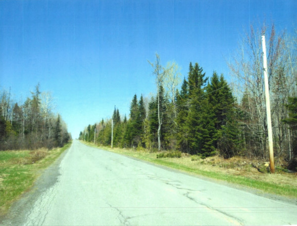 50 Acres for Sale in Limestone, ME