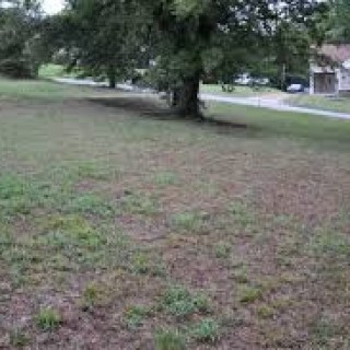 0.26 Acres for Sale in Little Rock, AR