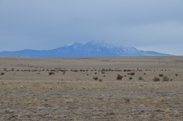 35.68 Acres for Sale in Model, CO