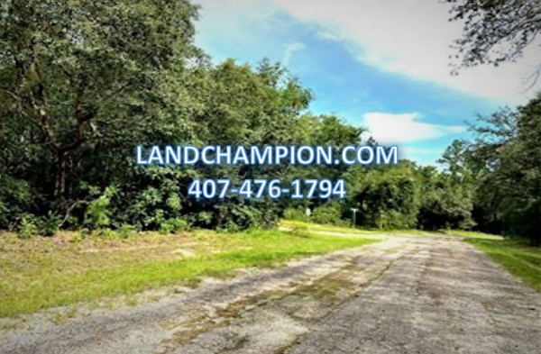 0.2 Acres for Sale in Citrus Springs, FL