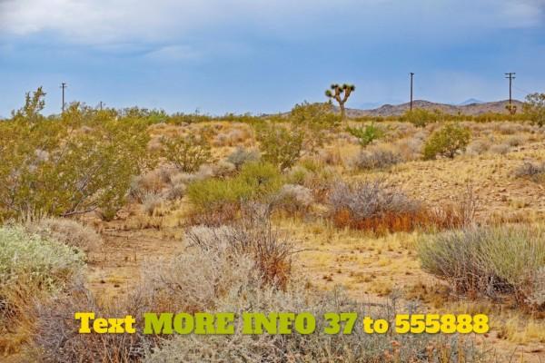 5 Acres for Sale in Joshua Tree, CA
