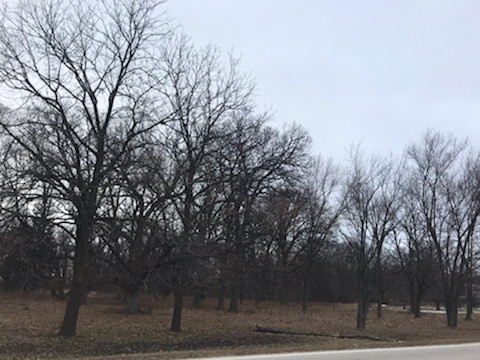 6.75 Acres for Sale in Elburn, IL