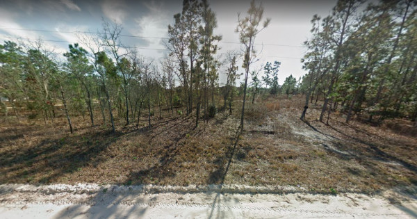 1.25 Acres for Sale in Morriston, FL