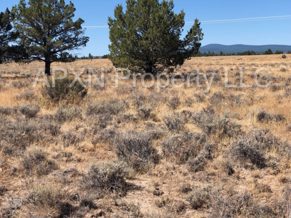 5.1 Acres for Sale in Chiloquin, OR