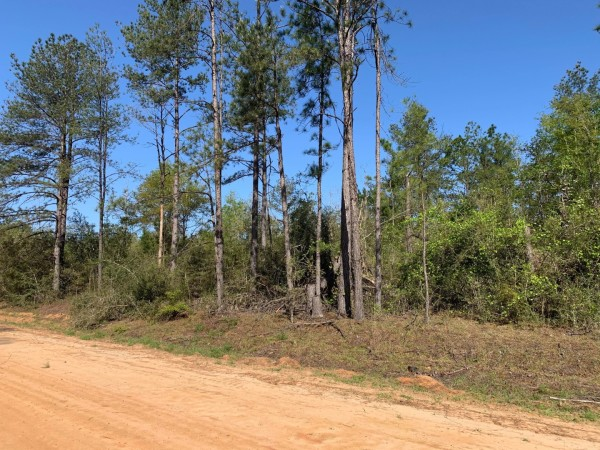 1.18 Acres for Sale in Alford, FL