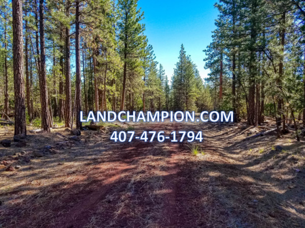 0.91 Acres for Sale in Alturas, CA