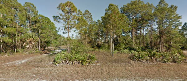 0.3 Acres for Sale in Lehigh Acres, FL