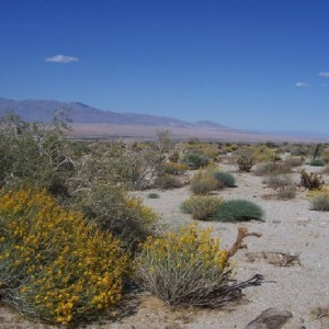 10 Acres for Sale in Borrego Springs, CA