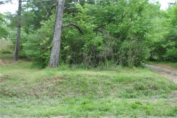15.24 Acres for Sale in Plainville, GA