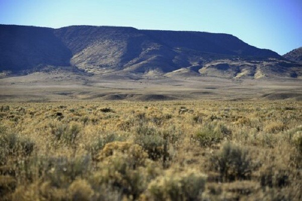 5 Acres for Sale in Sanford, CO