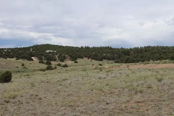 7.44 Acres for Sale in Westcliffe, CO
