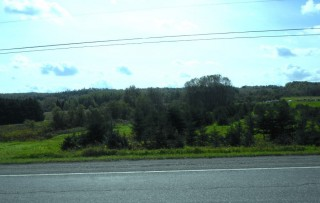 53.3 Acres for Sale in New Sweden, ME
