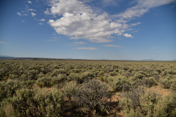 5 Acres for Sale in San Luis, CO