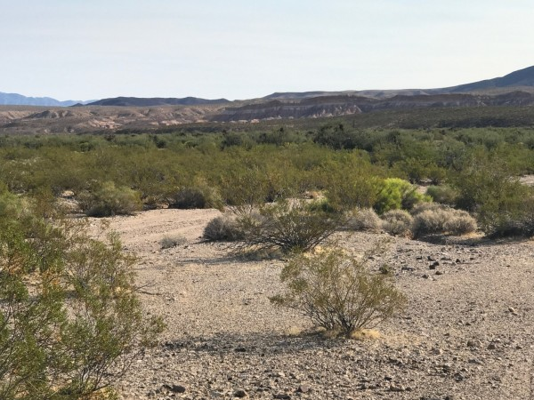 40 Acres for Sale in Temple Bar, AZ