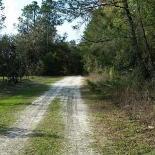 1.02 Acres for Sale in Pomona Park, FL