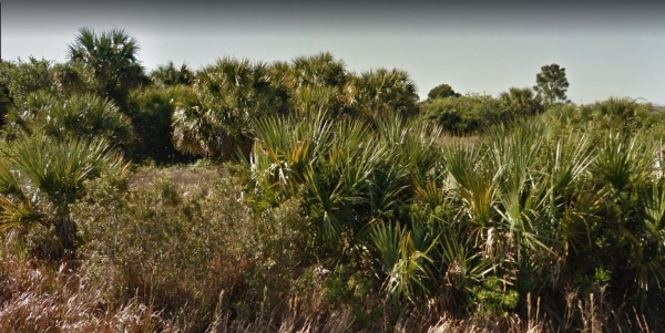 0.23 Acres for Sale in Palm Bay, FL