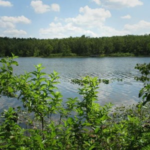 0.25 Acres for Sale in Horseshoe Bend, AR